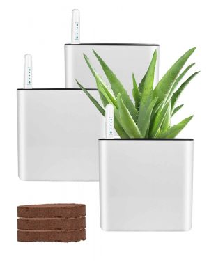 GardenBasix Self Watering Planter for Indoor Plants Flowers African Violets Square Pots (5.5'', White)