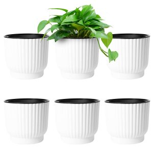 African Violet Pot, Orchid Pot, Self Watering Pot. Perfect for Succulents, Orchids, African Violet, Herbs, and Cactus. 3 Pack of Different Sized Pots.