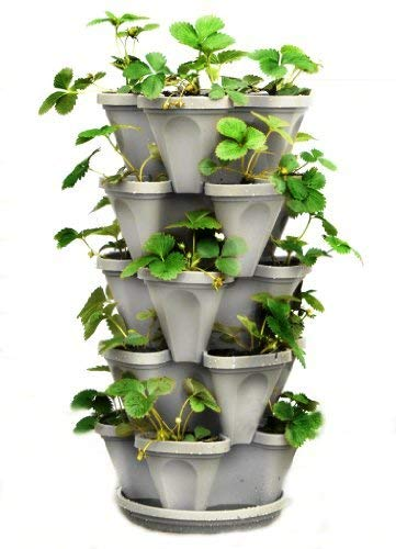 5 Tier Stackable Planter for Strawberries