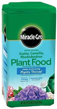 Miracle GRO Acid-Loving Plant Food