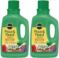 Miracle-Gro Pour & Feed Plant Food (Liquid) for Hydrangeas