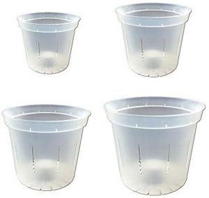 rePotme Slotted Clear Orchid Pot