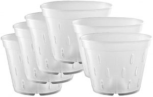 YIKUSH 5.5 inch 10 Pack Orchid Clear Flower Pot